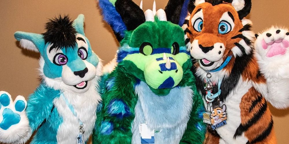 A Deep Dive to the Furry Community
